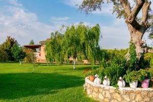 Κήπος έξω από το Evaggelia Studios