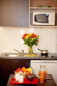 A kitchen or kitchenette at Aparthotel Adagio Access Paris Saint-Denis Pleyel