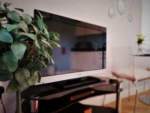 A television and/or entertainment center at Central Bath Apartment