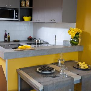 A kitchen or kitchenette at Aparthotel Adagio Paris XV