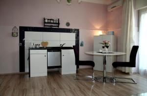 A kitchen or kitchenette at Apartments ABA Zagreb