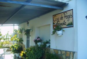 Casa Pepeta