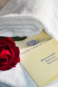 Foto del hotel  Hotel María Luisa