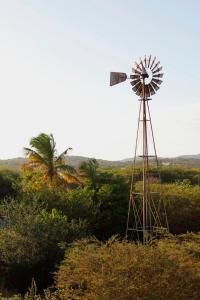 Auriga Ecolodge