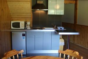 Cuisine ou kitchenette dans l'établissement Résidence Le Saporta - Appartements