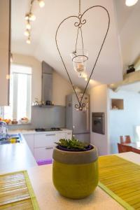 Apartment Beleca 1