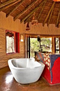 Jaci's Tree & Safari Lodges