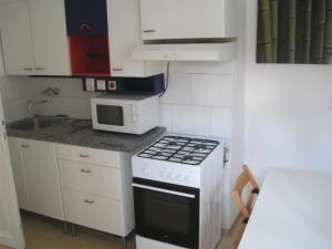 Кухня или мини-кухня в Apartmány Železná