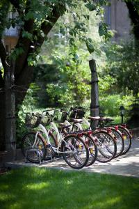 Biking at or in the surroundings of Abella Suites & Apartments by Artery Hotels