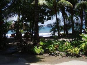 Fenix Hotel - On the Beach