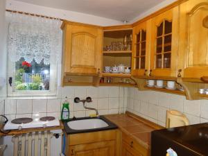 Kuchyň nebo kuchyňský kout v ubytování Apartmán - Dagmar