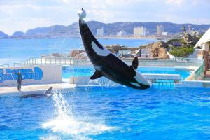 Kamogawa Sea World Hotel