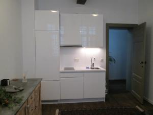 A kitchen or kitchenette at Holiday Home De Ware Jacob