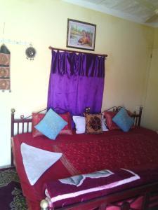 Chandani Desert Resort Camp