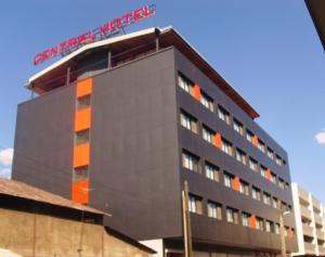 塔纳中心酒店 (Central Hotel Tana)