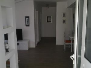 Apartment Cetinjska