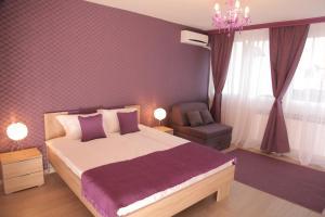 Apartment Crveni Krst, Vracar