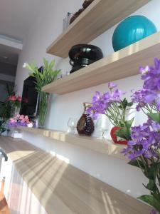 Hanoian Apartment Fine Stay