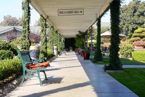 Picture of Lamp Liter Inn