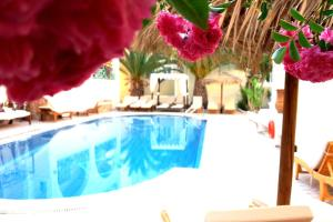 The swimming pool at or near Hotel Zeus