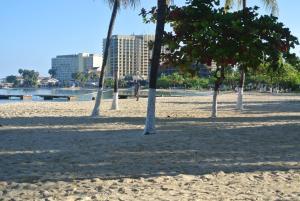 Beach Studio 6