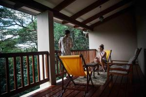Honeywood Forest Lodge