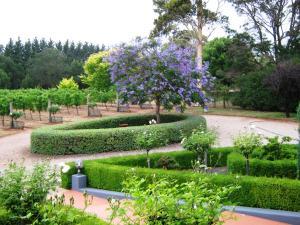 Waybourne- Vineyard and Winery