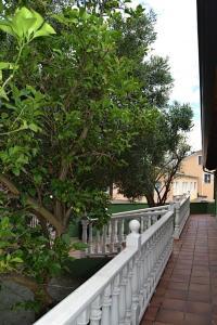 A balcony or terrace at Apartamentos Rurales Casa Ron