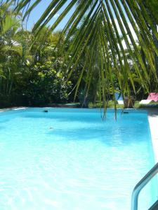 Der Swimmingpool an oder in der Nähe von Villa Du Lagon