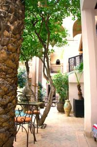 Riad Palmier