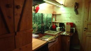 A kitchen or kitchenette at Ferienhaus Waldwichtel am Wald und See