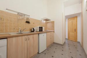 A kitchen or kitchenette at Baross Lux Apartments