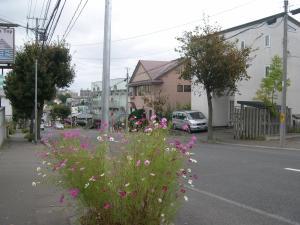 Guest House Yasumizaka