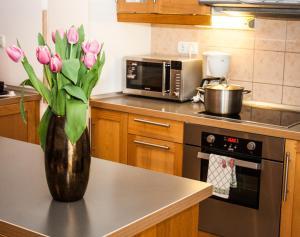Ett kök eller pentry på Akacfa Holiday Apartments