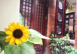 Dongshan Courtyard