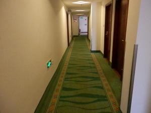GreenTree Inn Shanghai Hongqiao Airport No.2 Express Hotel
