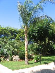 A garden outside Villa Santa Margherita
