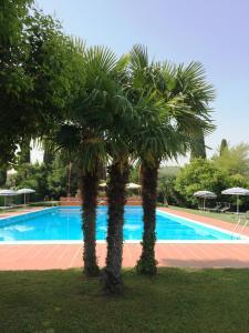 The swimming pool at or near La Fattoria Apartments