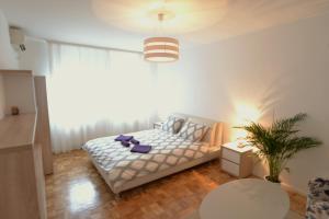 New Belgrade Arena cozy apartment