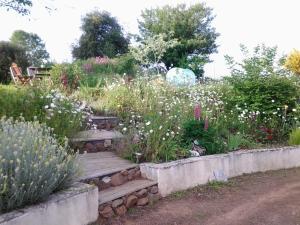 A garden outside Kerean House