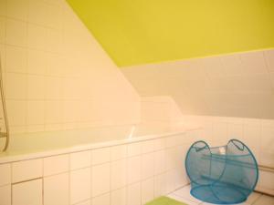 Salle de bains dans l'établissement Le Lys Bischheim