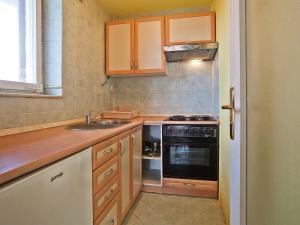 A kitchen or kitchenette at Apartment Vladimir Iv