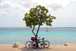 City Inn Bonaire