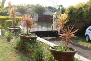 Durban North Guesthouse
