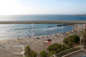 Oceanfront Palmetto Eliptic