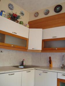 Кухня или мини-кухня в Apartments Centr near Inturist