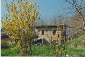 (Casa Vacanze Col di Morello)
