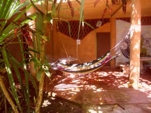 Piramys Hostel and Tours in Dominical