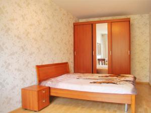 Apartment Pushkinskaya 4
