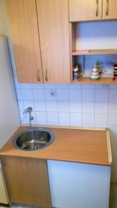 Apartment Sava